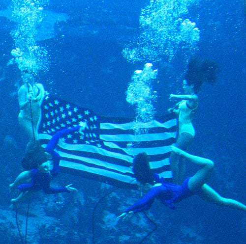The Mermaid Show at Weeki Wachee, Spring Hill, Florida - On The Watch List
