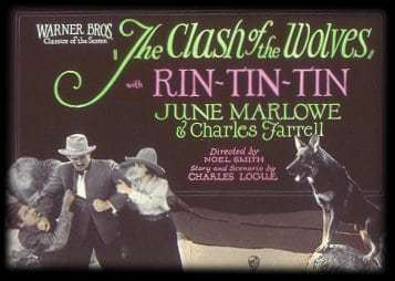 rin-tin-tin-clash-of-the-wolves